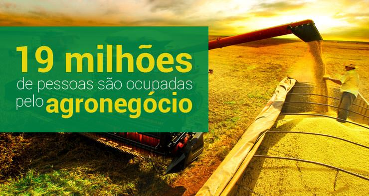 Agronegócio soma 19 milhões de pessoas ocupadas
