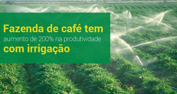 Fazenda de café conilon tem aumento de mais de 200% na produtividade com implantação de irrigação