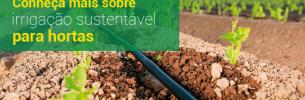 Conheça mais sobre irrigação sustentável para hortas