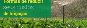 Formas de reduzir seus custos de irrigação