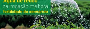 Pesquisa do Insa conclui que água de reuso na irrigação melhora fertilidade do semiárido