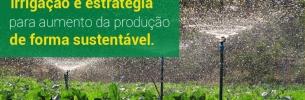 Irrigação é estratégia para aumento da produção de forma sustentável