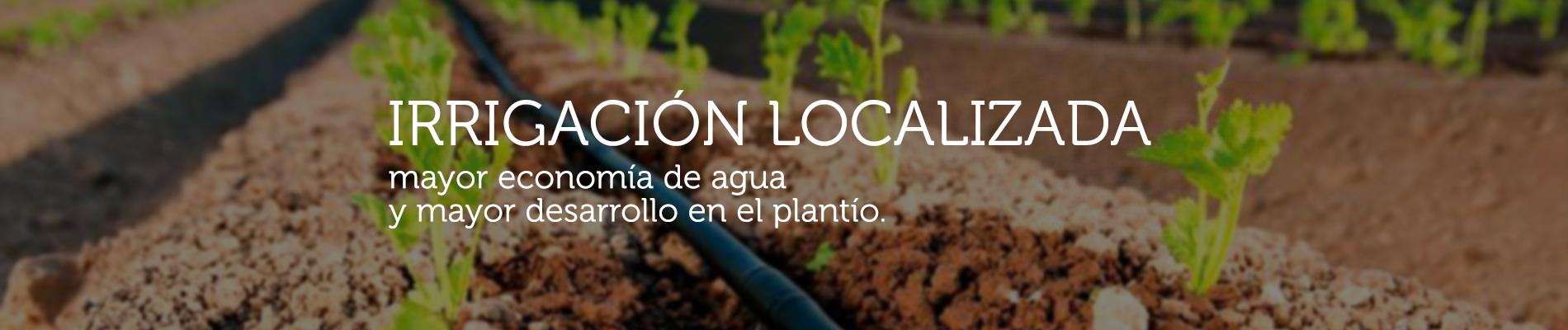 Mayor economía y desarrollo con la irrigación localizada