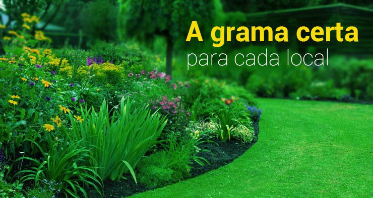 A grama certa para cada local
