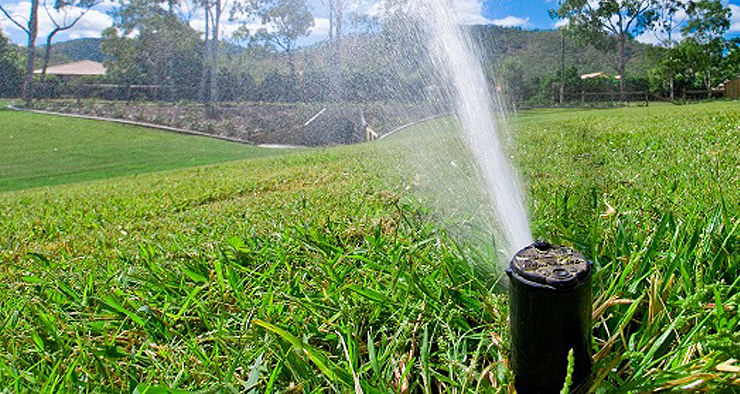 Como irrigar seu gramado?