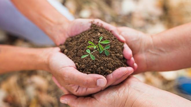 Dia do Agricultor: 28 de julho
