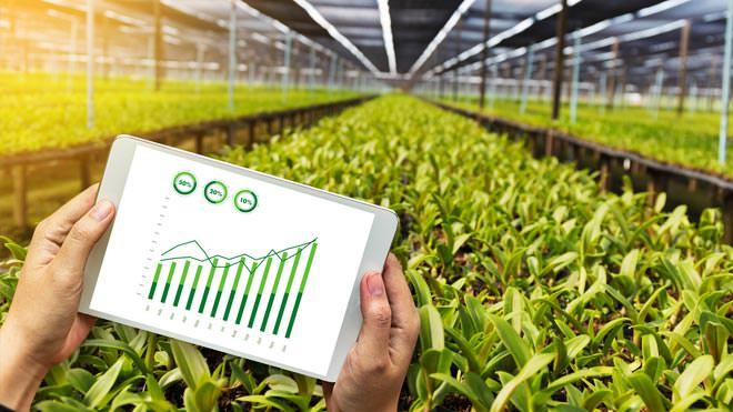 Agricultura de precisão: a tecnologia no campo