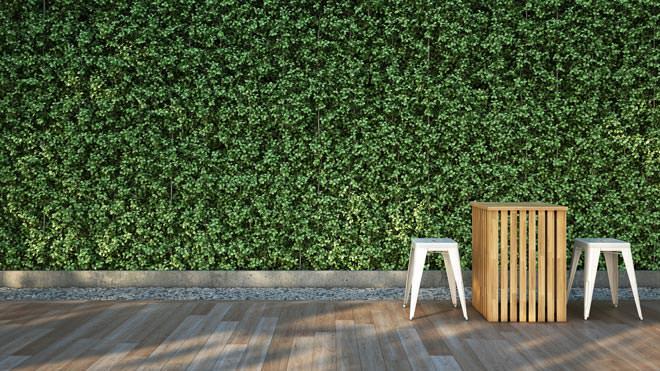 Os benefícios dos jardins verticais durante o verão