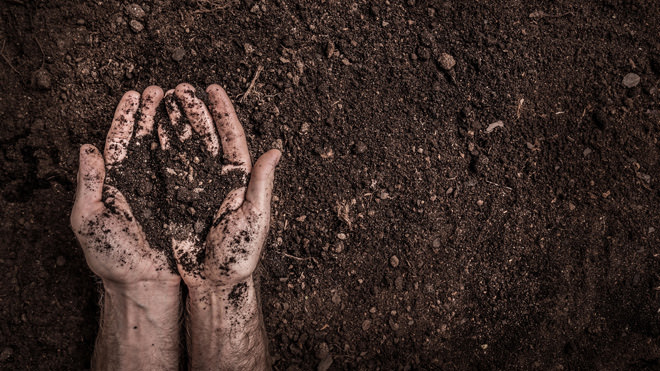 Como tornar o solo fértil?