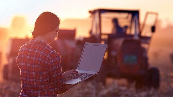 Atuação feminina no agronegócio cresce a cada ano