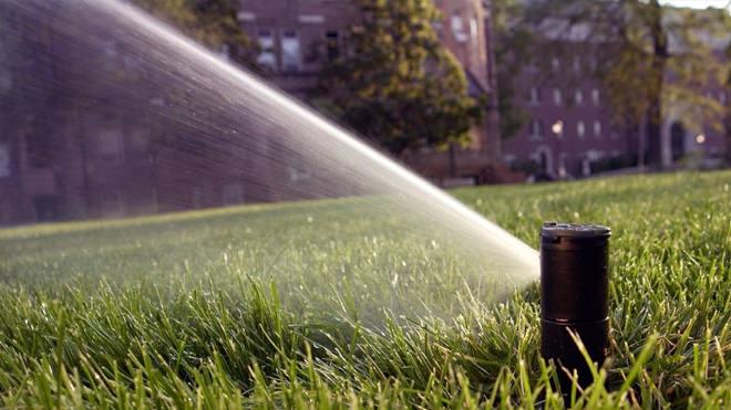 A importância dos aspersores na irrigação