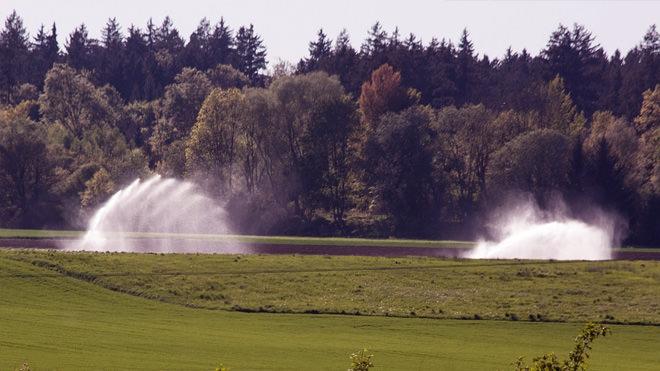 A importância de um projeto de irrigação