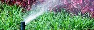 Benefícios da irrigação automatizada em casa